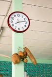 Popularny gospodarstwo domowe zegarów zrozumienie Obraz Royalty Free