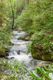 Popularny pstrągowy strumień Zdjęcie Royalty Free