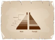 The Population Pyramids Graphs with 4 Generation. Population and Demography, Population Pyramids Chart or Age Structure Graph with Baby Boomers Generation, Gen X Royalty Free Stock Photos