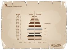 2016-2020 Population Pyramids Graphs with 4 Generation. Population and Demography, Population Pyramids Chart or Age Structure Graph with Baby Boomers Generation Royalty Free Stock Images