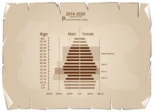 2016-2020 Population Pyramids Graphs with 4 Generation. Population and Demography, Population Pyramids Chart or Age Structure Graph with Baby Boomers Generation Royalty Free Stock Photo