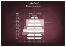 2016-2020 Population Pyramids Graphs with 4 Generation. Population and Demography, Illustration of Population Pyramids Chart or Age Structure Graph with Baby Royalty Free Stock Images