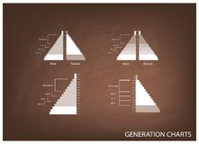 The Population Pyramids Graphs with 4 Generation Royalty Free Stock Images