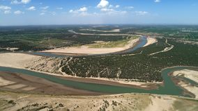 Populus euphratica forest in Tarim River Basin royalty free stock images