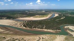 Populus euphratica Wald in der Tarim-Becken lizenzfreie stockbilder