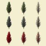 Populusboom het 3d teruggeven voor landschapsontwerper geïsoleerd Stock Afbeeldingen