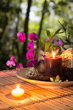 Popurrí, bowl, candles, and orchid - in forest. Preparation for spa: candle, massage with zen black stones, purple orchid and bamboo stalk Royalty Free Stock Photos