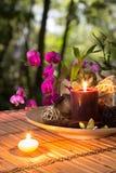 Popurrí, kom, kaarsen, en orchidee - in bos royalty-vrije stock foto's