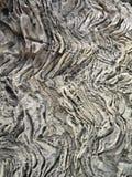 Poröser Gestein Stockbild