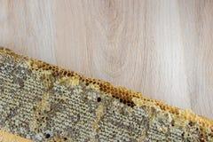 Por completo del panal sano delicioso fresco de la miel en un fram de madera Imagen de archivo libre de regalías