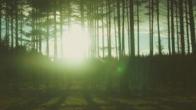 Por do sol filme