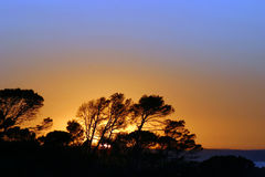 Por do sol 5 Fotos de Stock Royalty Free