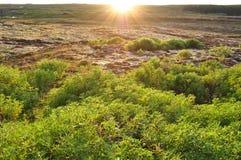 Por do sol Imagem de Stock