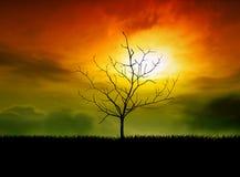 Por do sol abstrato Imagens de Stock
