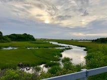 Por do sol acima da região pantanosa foto de stock royalty free