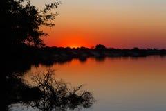 Por do sol africano em Zambezi fotos de stock