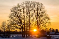 Por do sol alaranjado Imagem de Stock