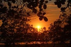 Por do sol alaranjado fotografia de stock
