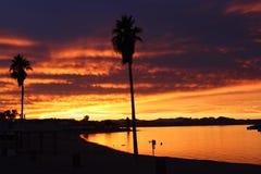 Por do sol alaranjado e vermelho sobre Lake Havasu o Arizona com palmeiras Fotografia de Stock Royalty Free