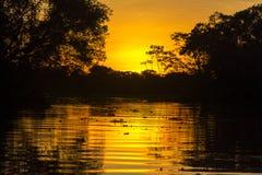 Por do sol alaranjado impetuoso das Amazonas Foto de Stock Royalty Free