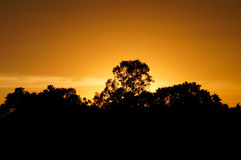 Por do sol amarelo Foto de Stock Royalty Free
