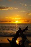 Por do sol amarelo fotografia de stock