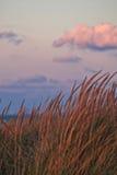 Por do sol ao longo da praia bonita do Lago Michigan com ideia da skyline de Chicago no fundo distante Fotografia de Stock