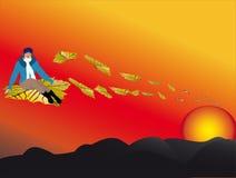 Por do sol e vôo Imagem de Stock