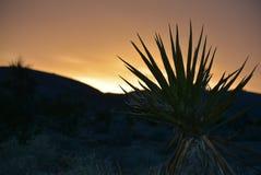 Por do sol atrás das montanhas mostradas em silhueta foto de stock royalty free