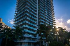 Por do sol através das palmeiras e de um arranha-céus em Belle Isle, Miami fotografia de stock