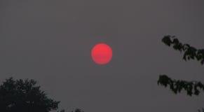 Por do sol através do fumo do incêndio florestal imagens de stock royalty free