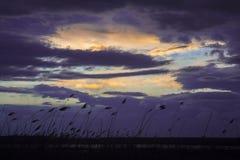 Por do sol azul Imagem de Stock Royalty Free