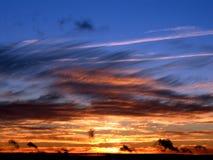 Por do sol azul Imagens de Stock Royalty Free