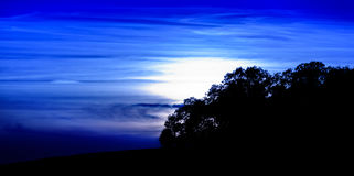 Por do sol azul profundo sobre árvores Fotografia de Stock