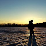 por do sol backlit silhueta Imagem de Stock