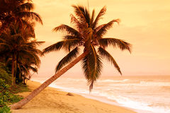 Por do sol bonito Imagem de Stock Royalty Free