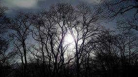 Por do sol bonito Fotografia de Stock Royalty Free