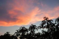 por do sol bonito, céu e nuvens Imagens de Stock