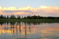 Por do sol bonito do verão Imagem de Stock