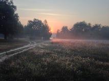 Por do sol bonito em 6 am no campo Imagem de Stock