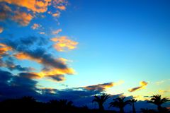 Por do sol bonito do inverno em uma aleia da palma foto de stock royalty free