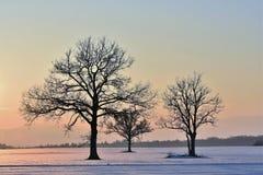 Por do sol bonito do inverno Paisagem de Lituânia imagens de stock