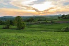 Por do sol bonito no campo da mola Fotografia de Stock Royalty Free