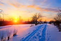 Por do sol bonito no campo no inverno Fotografia de Stock Royalty Free