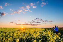 Por do sol bonito sobre o campo da colza imagem de stock