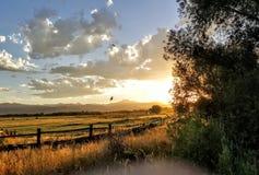 Por do sol calmo Fotografia de Stock