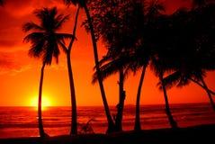 Por do sol colorido Fotos de Stock Royalty Free