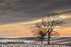 Por do sol colorido bonito sobre a paisagem do inverno Fotografia de Stock Royalty Free