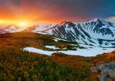 Por do sol colorido da mola Imagens de Stock Royalty Free