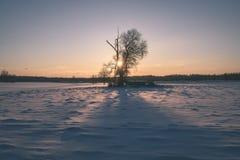 por do sol colorido do inverno com os raios claros que vêm com o grande Imagens de Stock Royalty Free
